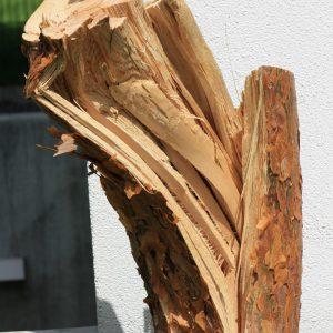 Astbruch als Skulptur: Macht auf der Terrasse noch eine gute Figur.